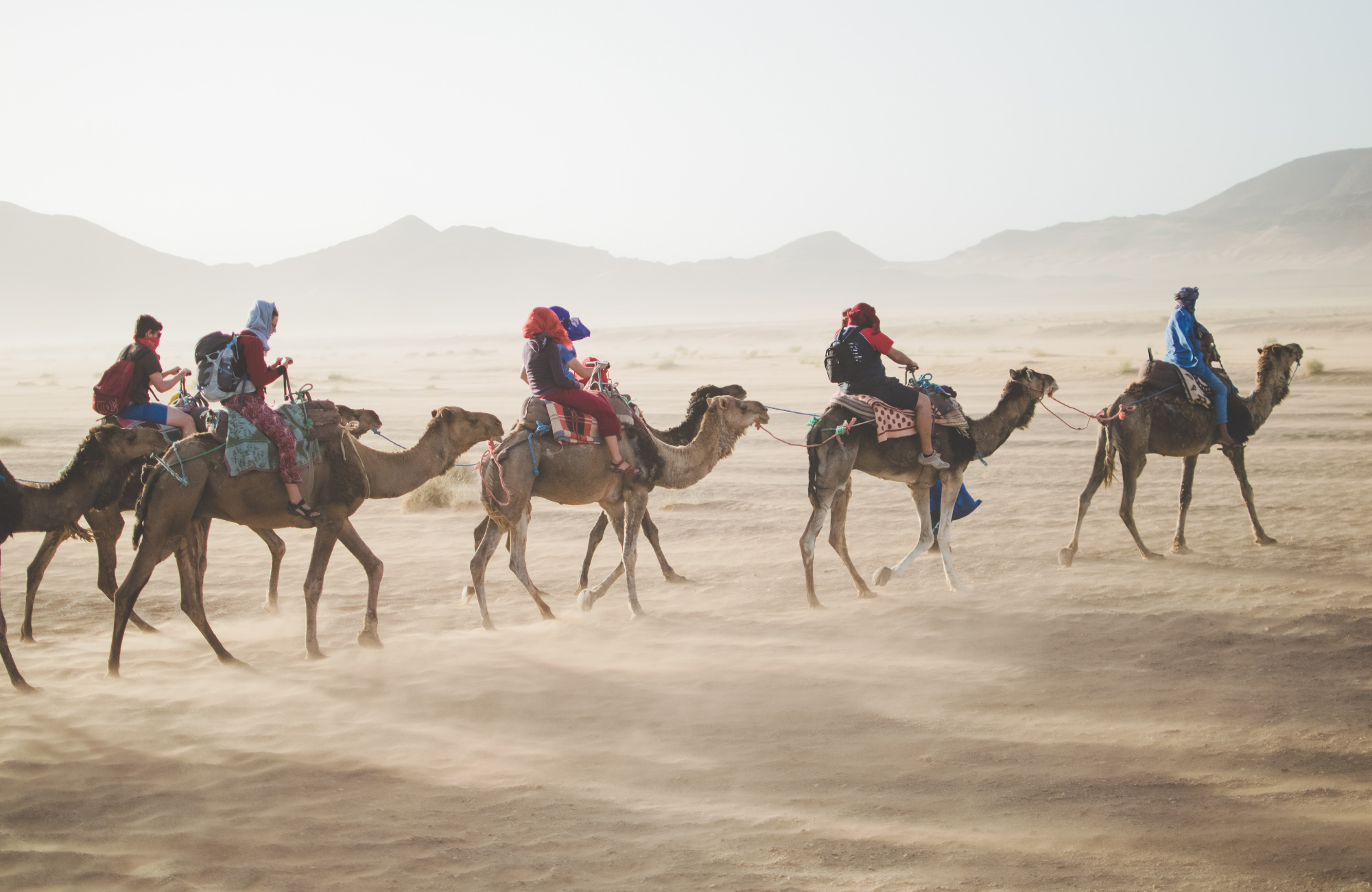 A group of people riding camels through the desert